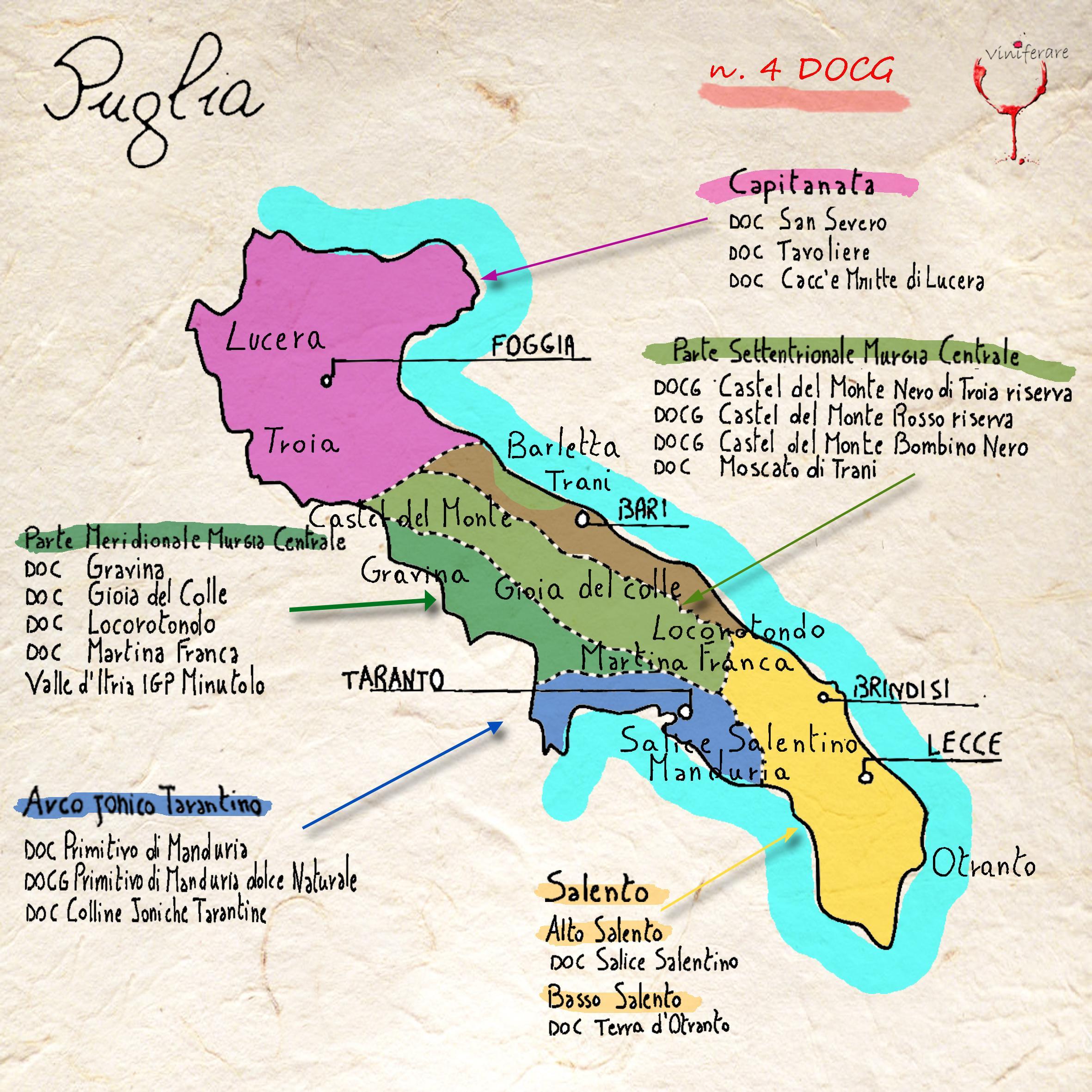 I Vini E I Vigneti Della Puglia Viniferare It