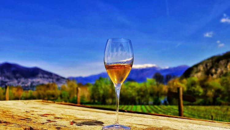 Il calice itinerante: Degustazione Vino Franciacorta