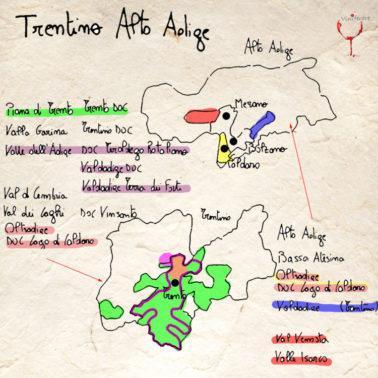 I Vini e Vigneti del Trentino Alto Adige